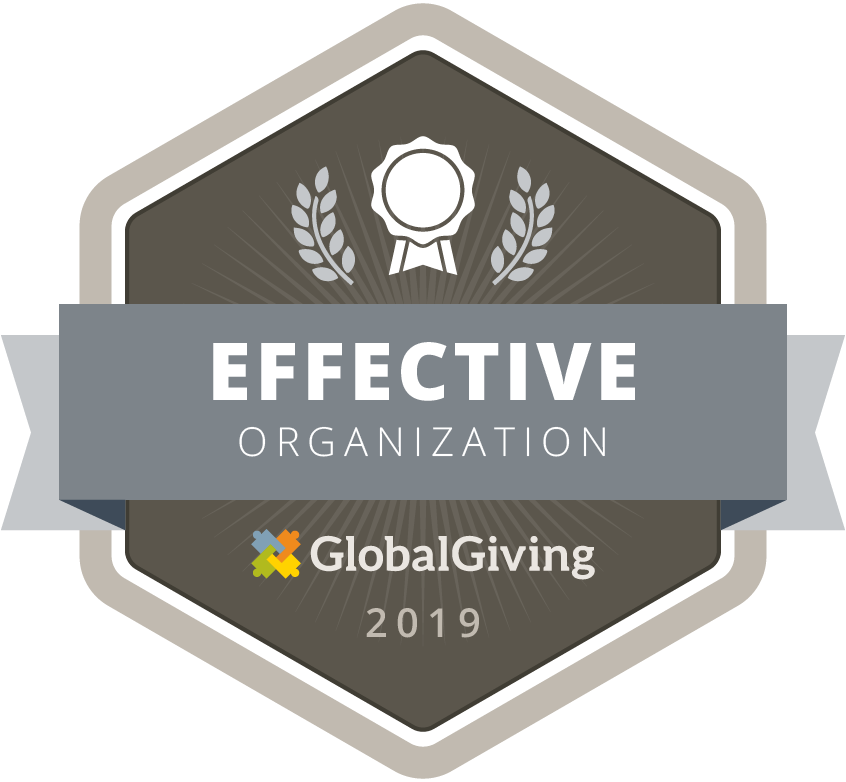 Global Giving 2019 Effective Organization